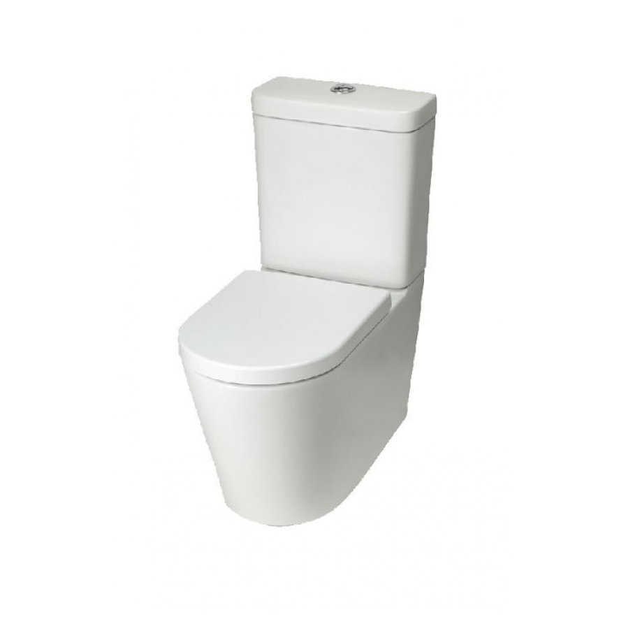 Loft Wall Faced Toilet
